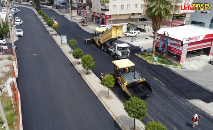Urfa Büyükşehir 17 günde neler yaptı?