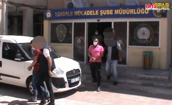 Urfa'da DEAŞ Operasyonu