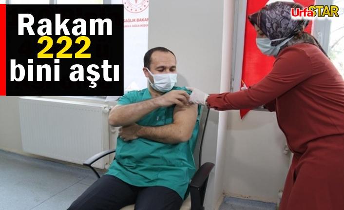 Urfa'da kaç bin kişi aşı oldu?