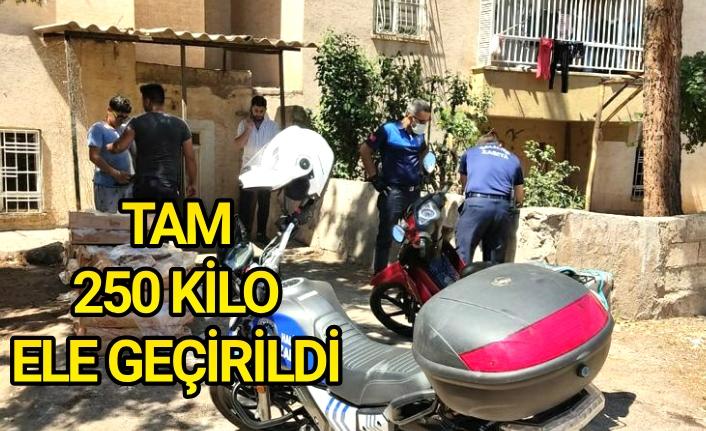 Haliliye'de vatandaşlar zehirlenmekten kurtarıldı