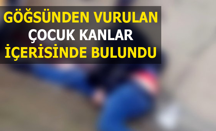 Urfa'da bir genç göğsünden vuruldu