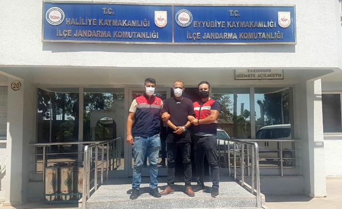 Aranan terörist Urfa'da ani baskınla yakalandı