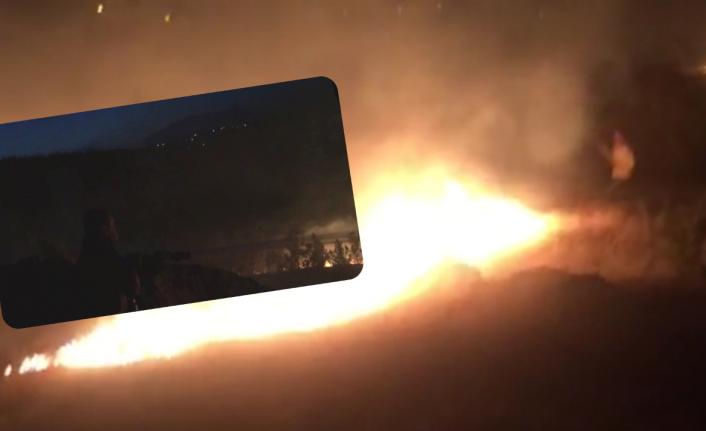 Urfa'da orman yangını!