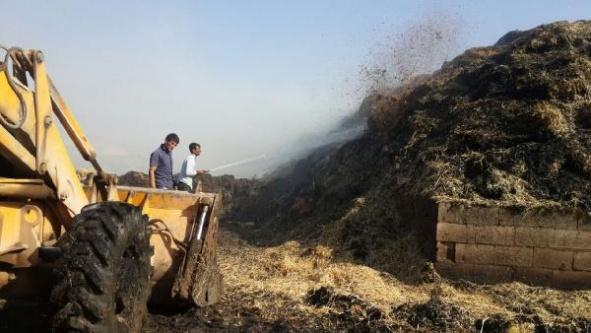 5 ton saman kül oldu