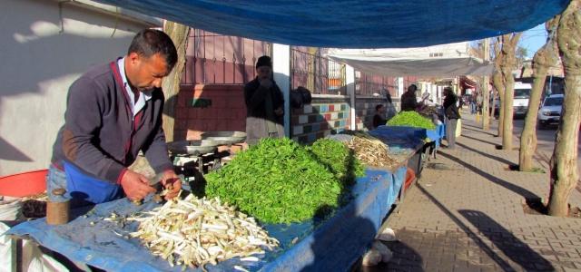 Baharın müjdecisi bitkiler pazara indi