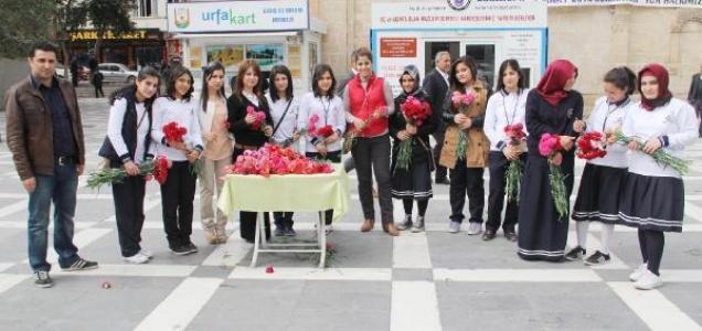 Kız öğrencilerden kadınlara 10 bin karanfil