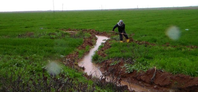Suyun yüzde 70'i tarımda harcanıyor