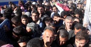Kobani'ye dönüyorlar