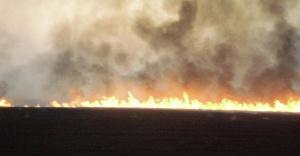 Urfa'da anız yangınları sürüyor