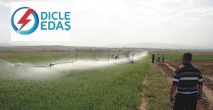 Urfa'da sulama birliklerinin elektriği kesildi