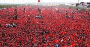 Üç parti Diyarbakır'a çıkarma yapacak