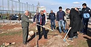 Hilvan'da Yeşillendirme Çalışmaları