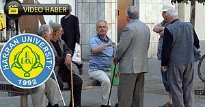 Harran Üniversitesinden güzel haber...