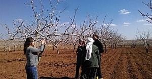 Tarım danışmanları sahadaki çalışmaları sürdürüyor