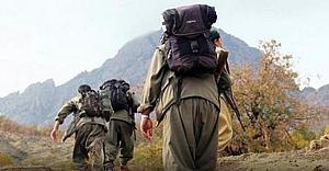 'PKK, iflasın en dibine vurmuş durumda'