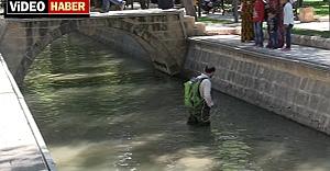 Balıklıgölde temizlik başladı
