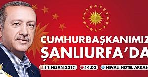 Erdoğan Bugün Urfa'da