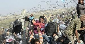 Sığınmacılarla ilgili dikkat çeken araştırma...
