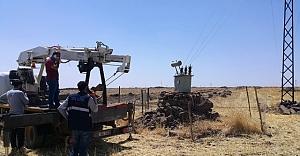 Urfa'da kaçak trafo bulundu