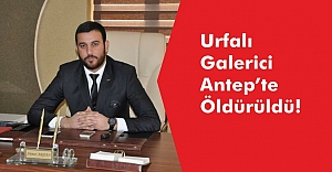 Urfalı Galerici Antep'te Öldürüldü!