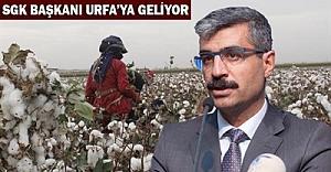 Mevsimlik işçiler Urfa'da konuşulacak!