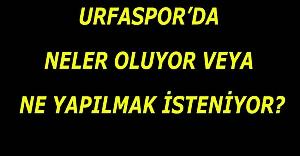 Urfaspor'la ilgili her şeyi anlatan yazı...