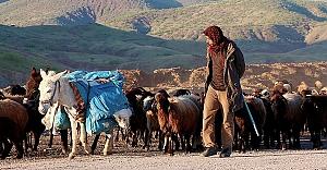 Göçerlerin Asırlardır Süren Çileli Yolculuğu
