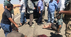 Köylüler vurdu Jandarma teslim aldı...