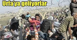 34 Bin Suriyeli için kritik karar!