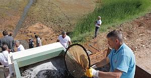 Ortadoğu'nun en büyük balık üretim tesisi Urfa'da...