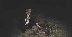 Urfa'da At Ölümleri Şoku (VİDEO)