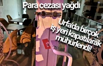 Urfa'da İş yerlerine flaş operasyonlar yapıldı
