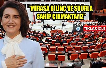 Milletvekili Açanal, Meclis'te konuştu
