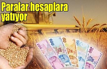 Urfalı çiftçilere müjde…