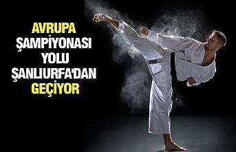 Karate Seçmeleri Şanlıurfa'da Yapılacak