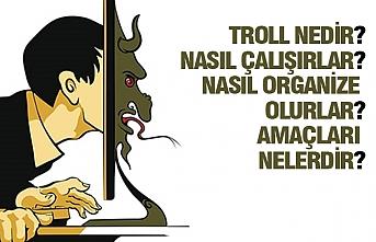 Türkiye'de Troll'ler...