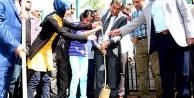 Ceylanpınar Belediyesinden 'Bir Fidan'da Sen Dik' Kampanyası
