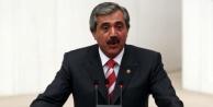 İzol: AK Parti'siz Türkiye düşünülemez