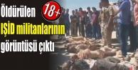 Kobani'den +18'lik görüntü