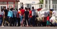Sınırda bekliyorlar!