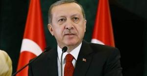 Erdoğan, anayasa için sahaya iniyor