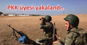 Jandarma'dan operasyon
