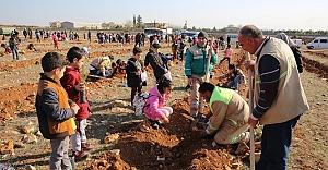 Haliliye'de çocuklar fidan dikti