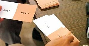 Urfa'da 3 dilde evet klibi hazırlandı