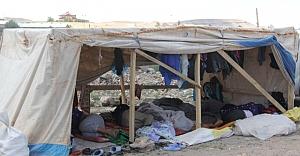 Urfa'da zorlu yaşam!