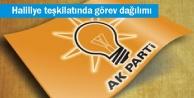 AK Parti Haliliye Teşkilatı'nda görev dağılımı