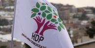 HDP kararını verdi