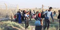 IŞİD, Telabyad'a saldırdı