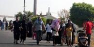 Suriyelilerle ilgili şok iddia