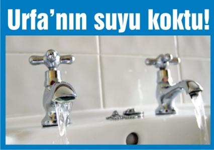 Urfa'nın suyu koktu!